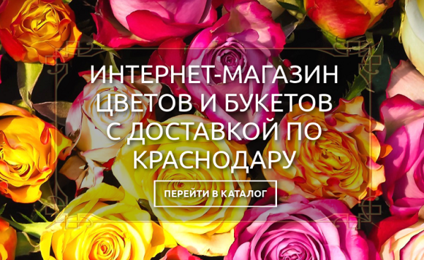 http://blog.traftop.biz/wp-content/uploads/2021/04/1-12.png